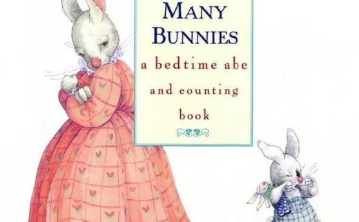 So_Many_Bunnies_Bedtime_ABC_Counting_Book数数小兔子(PDF MP3 视频)