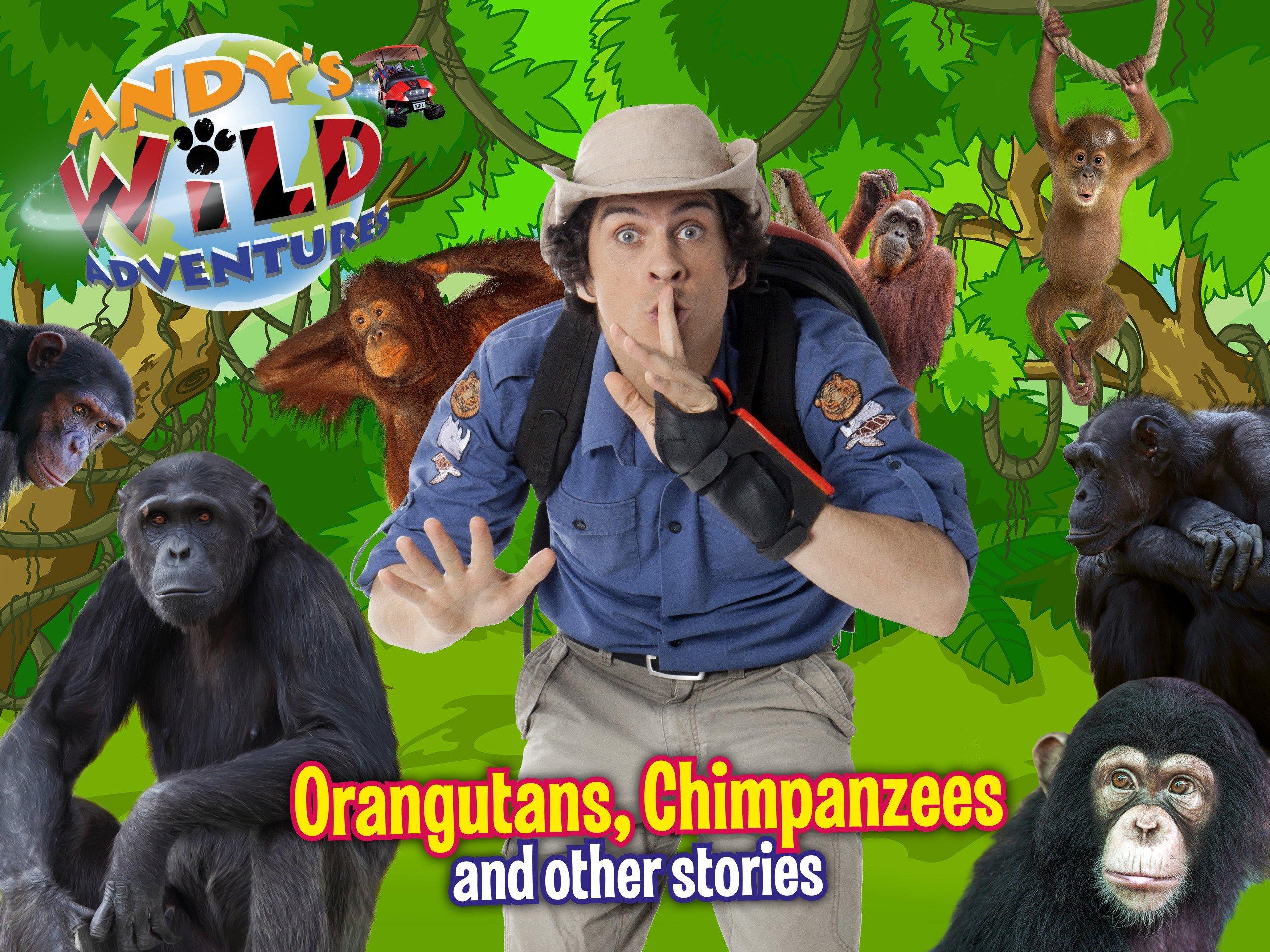 安迪野生历险Andy's Wild Adventures